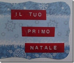IAN NATALE 2010 journaling
