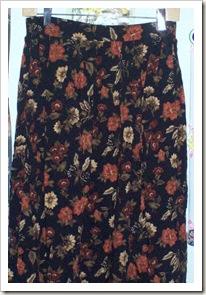 Skirt to Shirt Before