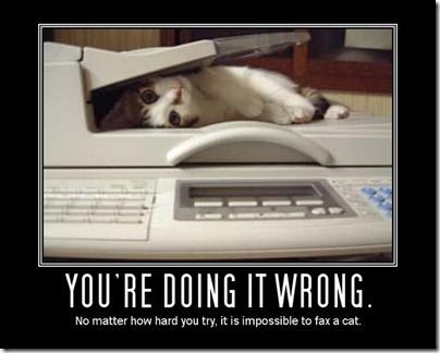 fax cat