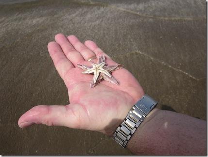 Oman Februarry 2011 054