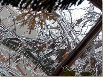 icy morning 006