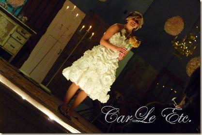 Chautauqua Wedding 057