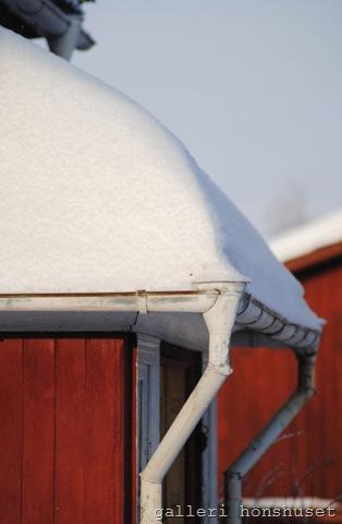 vinterbilder feb 2011 007