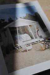 rådjur på gården maj 2011 014