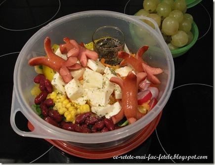 Articole culinare : Salata Mexicana