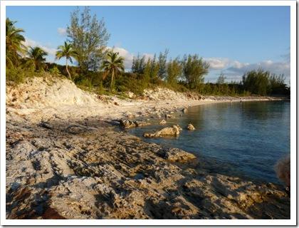 01-Oleander Cove