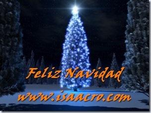 navidad20101