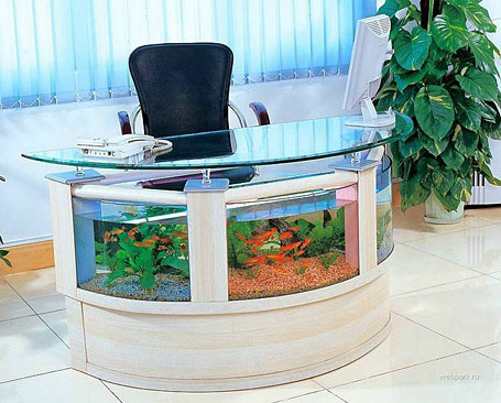 Fish Tank / Aquarium Office Reception Table