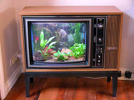 Old TV Fish Aquarium