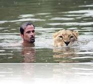 Su preferida es la leona llamada Meg, que pesa 185 kg