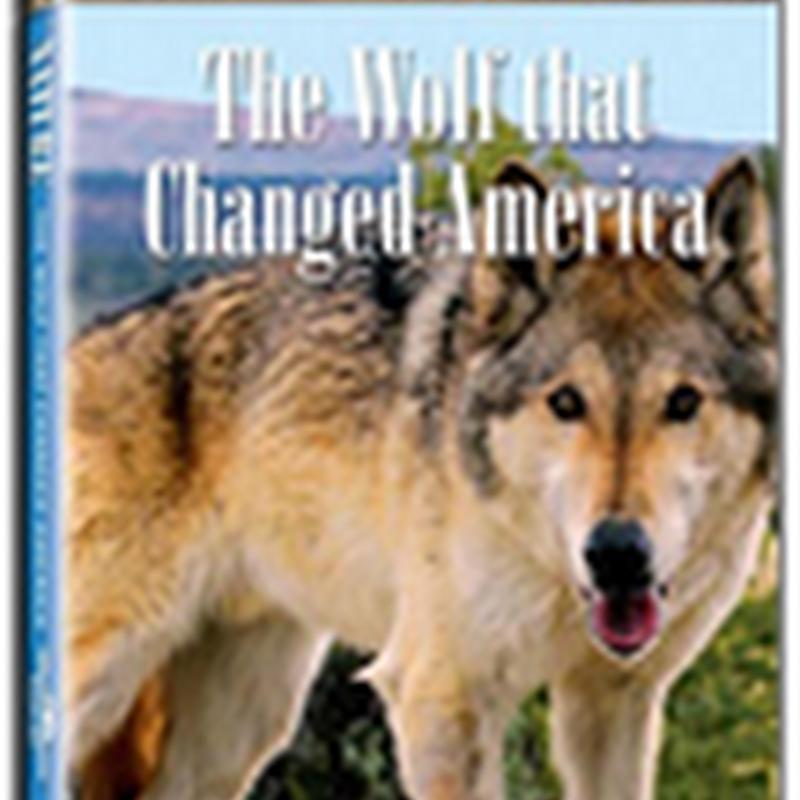 El Lobo que salvó América