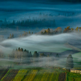 Autumn by Alen Jerinic - Landscapes Prairies, Meadows & Fields ( colorful, colors, forest, landscape, field, hayrack, foggy, nature, autumn, fog, slovenia, trees, pine trees, misty morning )