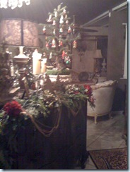 housechristmas 027