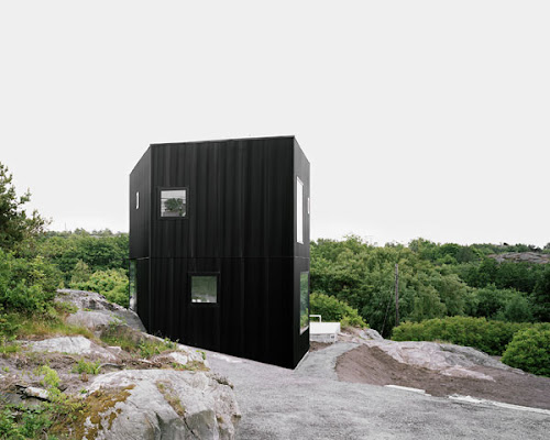 Forest House with Black Exterior