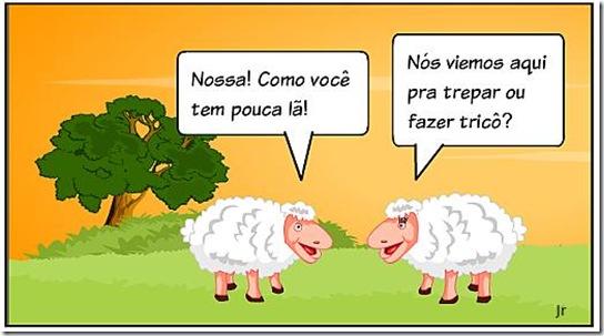 Edison - Carneirinho e ovelhinha