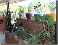 shade garden 1 8-4-2010 11-12-23 AM 3616x2712