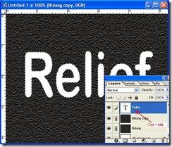 Relief-1