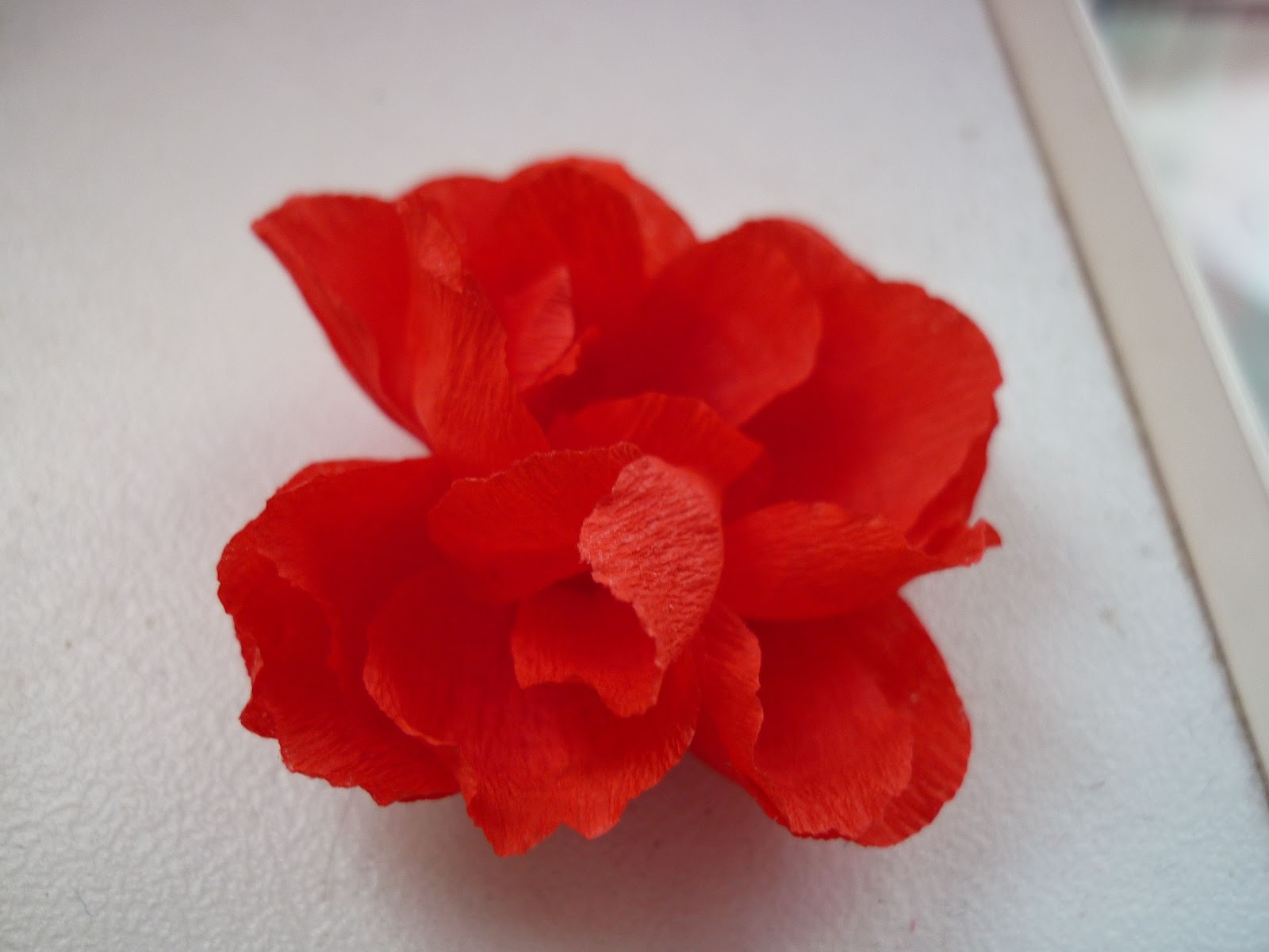 Цветы из крепированной бумаги мастер класс