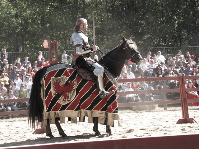 joustknight (1 of 1)