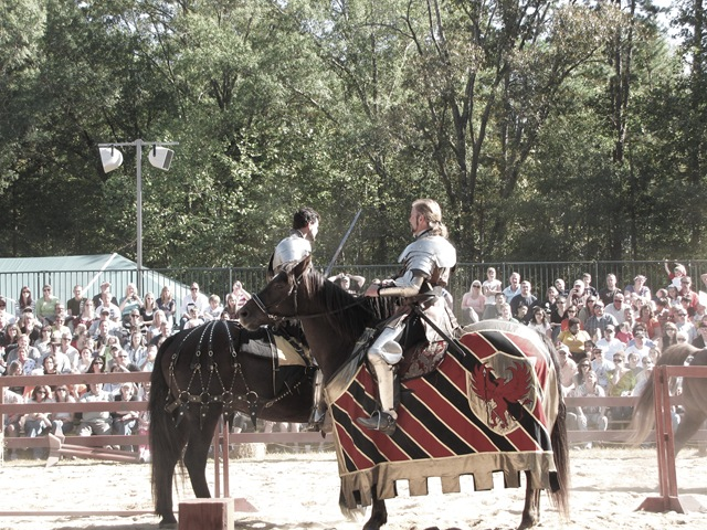 joustknight2 (1 of 1)