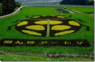 rice-art10-600x387