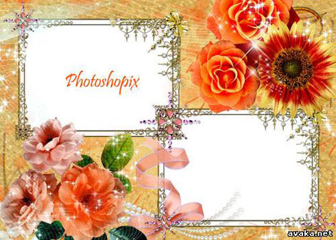Frame for Photo - Orange Rose