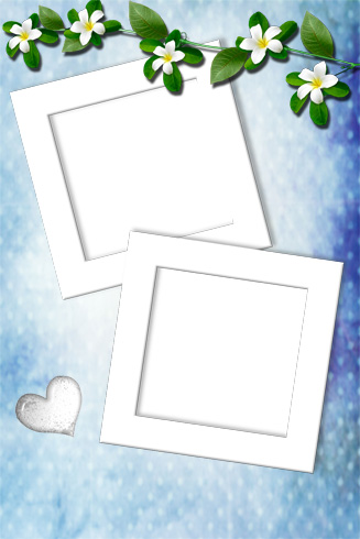 Frame for Photo - White Flowers