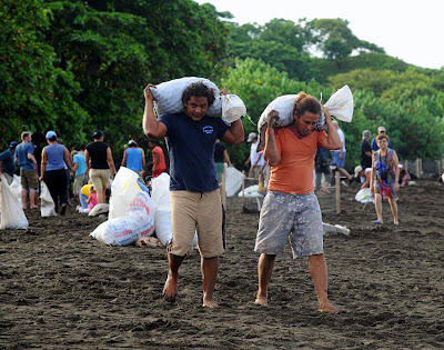 Men Carrying Sacks Filled With Turtles Eggs