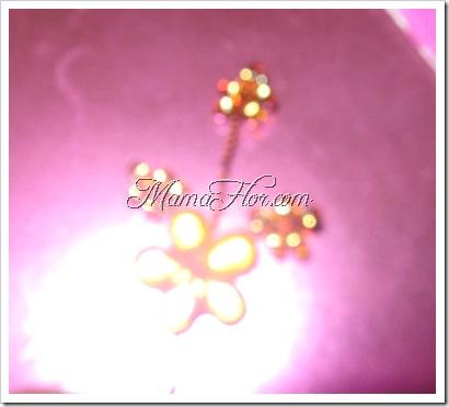 Flores: Ramitas para Tiaras…