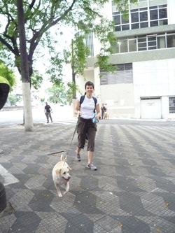 Cãonhecendo São Paulo (33)