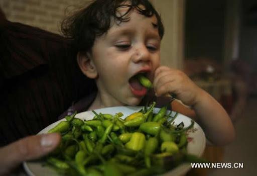 Balita Pemakan Cabe Termuda di Dunia