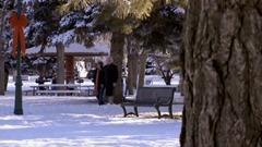 Christmas Angel (2009)2