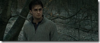 Harry Potter and the Deathly Hallows Part 1 (2010)2