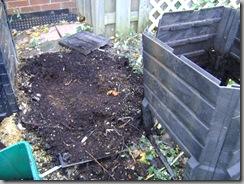 garden fall 019
