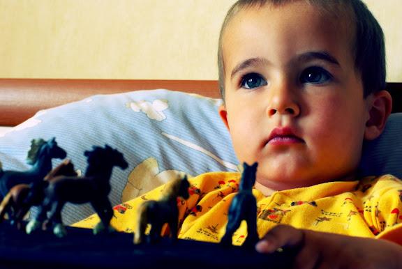boy toy horse blue eyes мальчик игрушечные лошадки голубые глаза