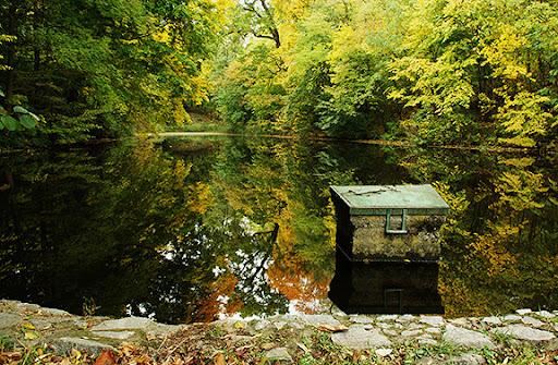 белая церковь александрийский парк пруд осень