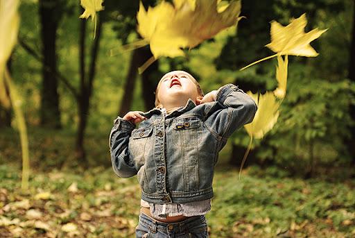 осень желтые листья мальчик fall autumn yellow leaves boy