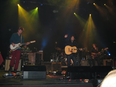 Wilco by Crystal DiPietro