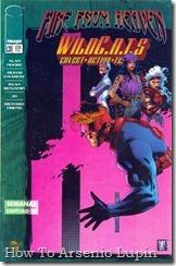 P00027 - WildCATS v1 #29