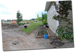 Backyard Construction 022