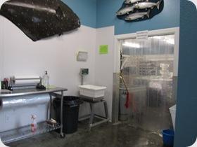 Echo Fish Processing Center, Soldotna, AK