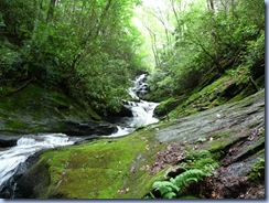 Roaring Falls hike11