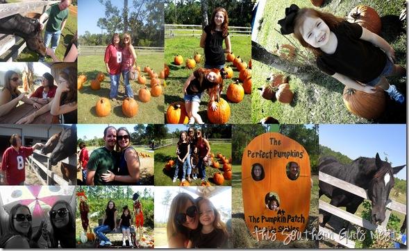2010-10-10 october 2010