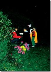 Halloween Costumes trick treat 2 09