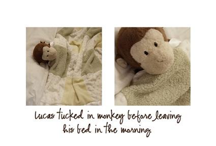 lucas n monkey copy