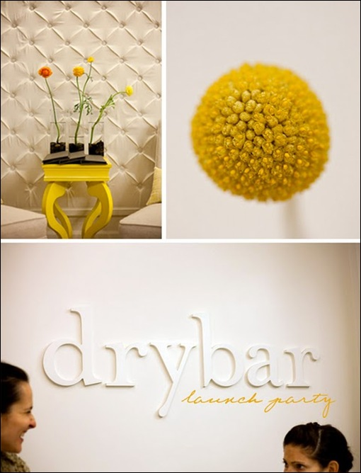 drybar1 yes please