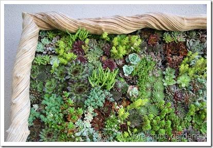 flora grubbs vertical garden