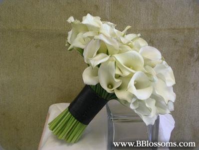 White16 brassavolas floral couture