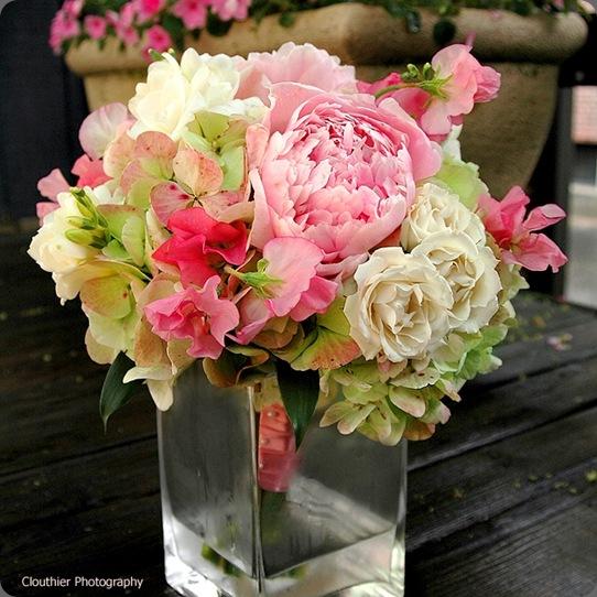pinkgreen stoneblossom