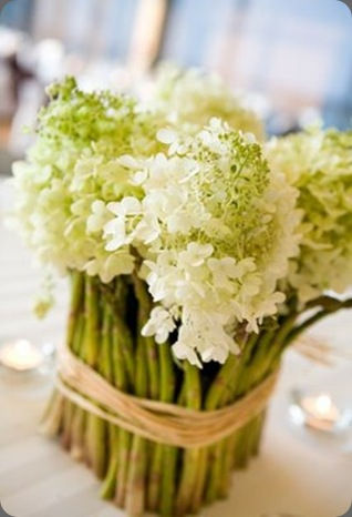 asparagus last petal austin